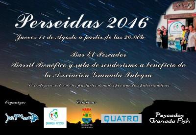 CartelPerseidas2016