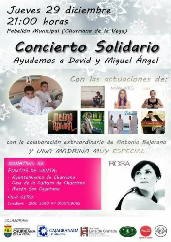 Concierto solidario David y Miguel Angel